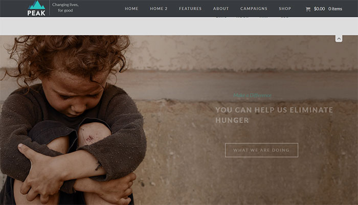 Non-profit Charity Fundraising WordPress Themes