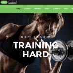 How to set up Portfolioon Training Zone Theme
