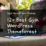 Top 12+ Best Gym Fitness WordPress Themes 2017