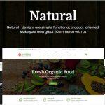 Natural - Online Fresh Food WooCommerce WordPress Theme