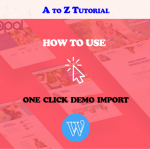 How to use one click demo import in WordPress