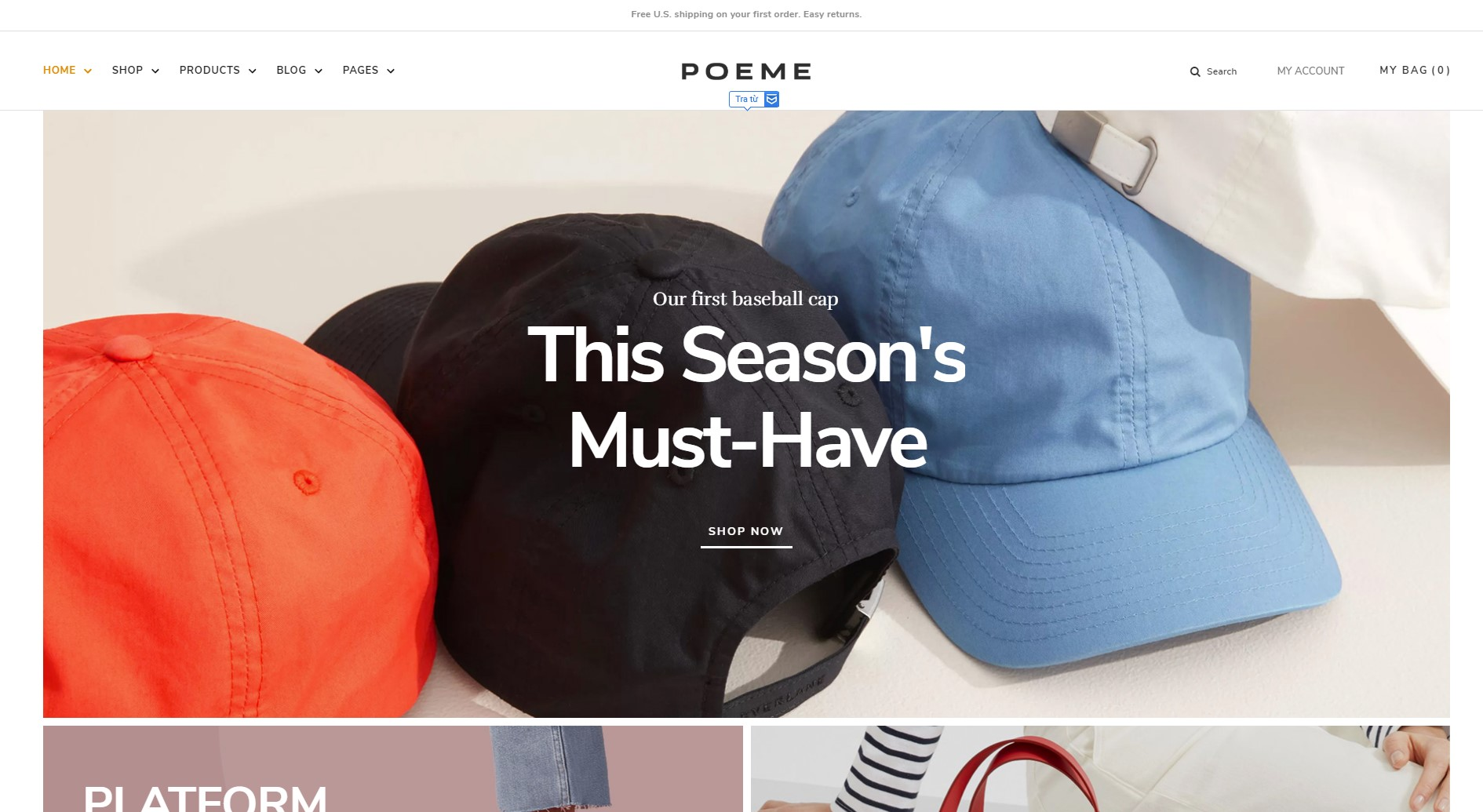 top 10 fashion wordpress themes