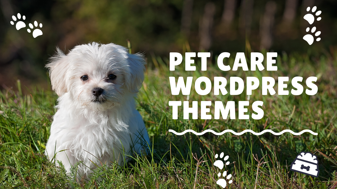 Best Pet Care WordPress Themes