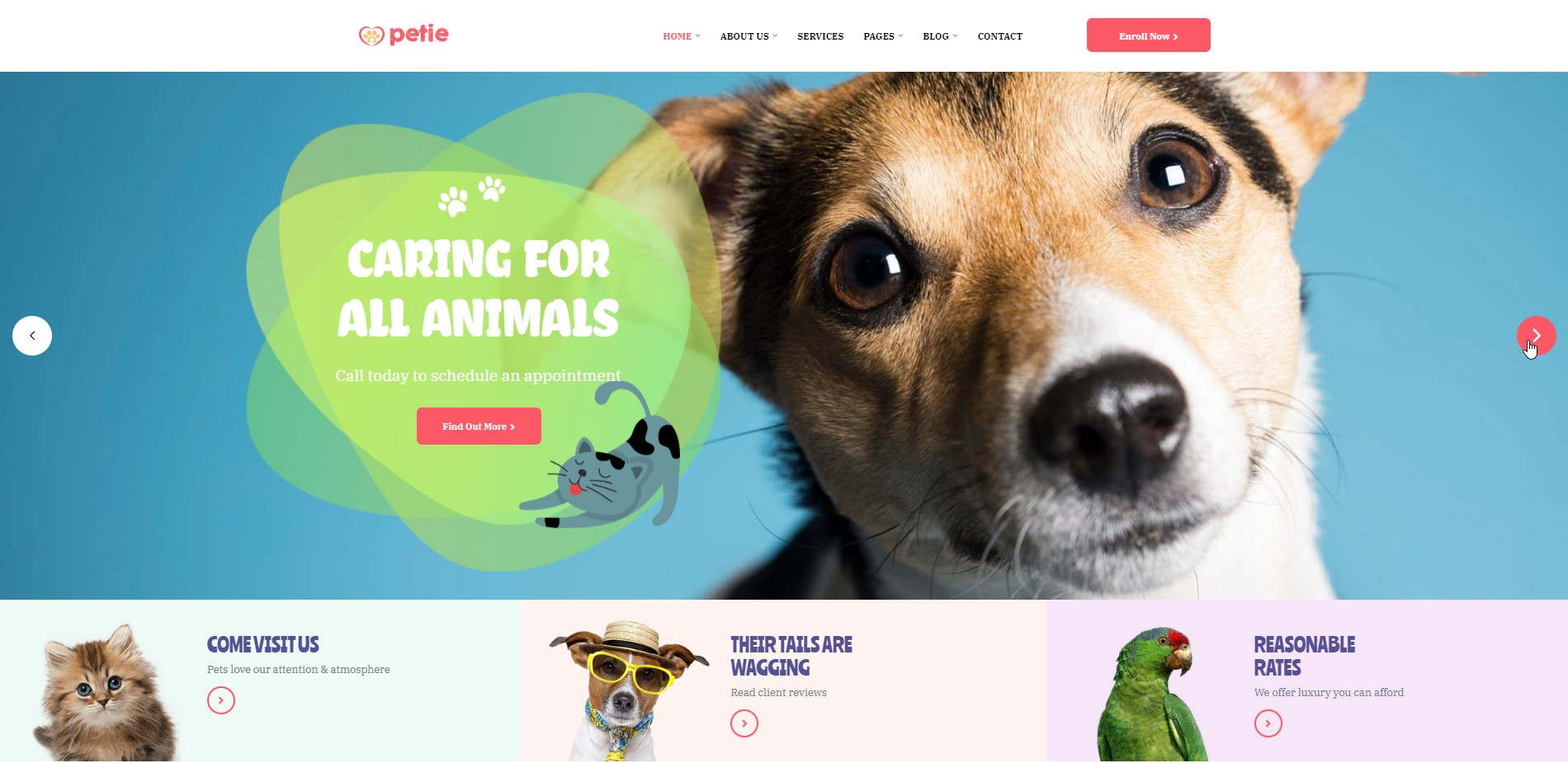 Petie - Pet Care & Veterinary WordPress Theme