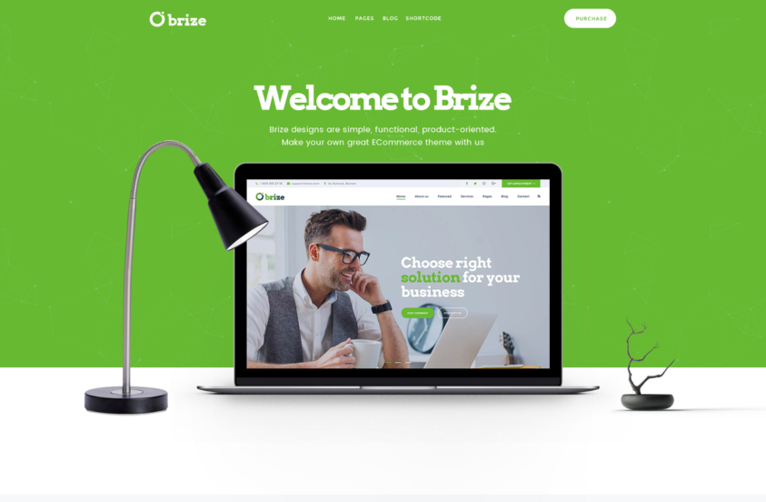 brize-consultant-wordpress-theme-free